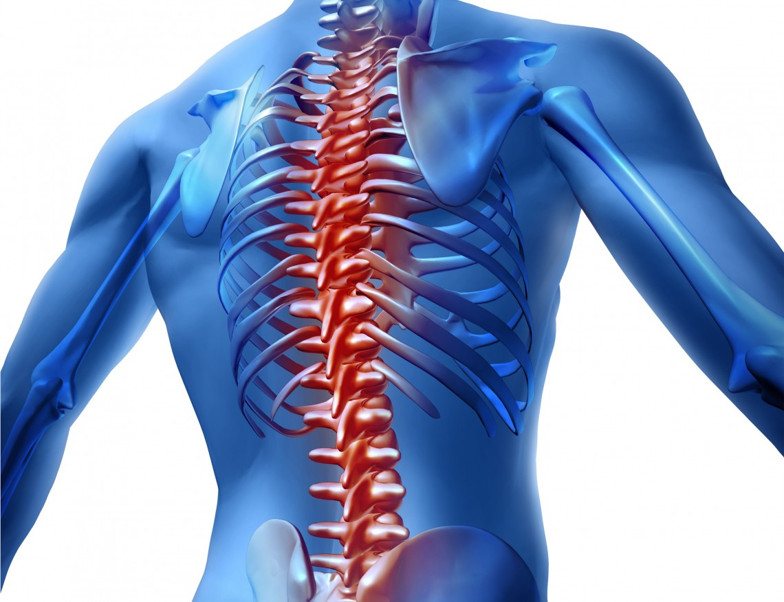 Free Spinal Checks